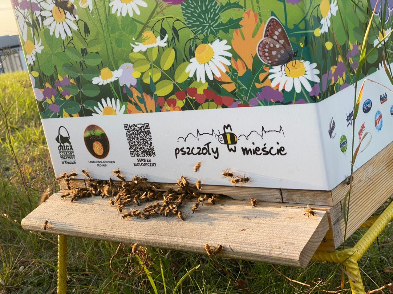 """LanaCoin supports effort in Poland 'Bees in the City"""". In Kielce, a Mars rover with a hive set off from the monument of Henryk Sienkiewicz"""